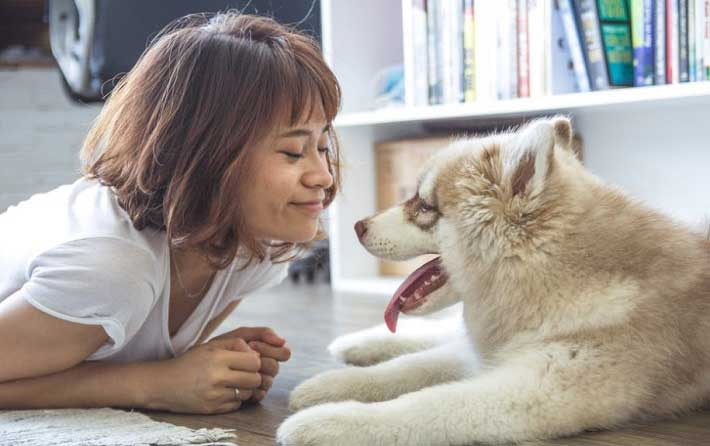 Can Pets Improve Your Relationship?