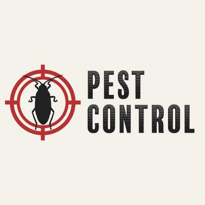 10 Reasons To Hire a Professional Pest Control Company